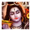 भगवान् शिव का आशीर्वाद - रुद्राक्ष