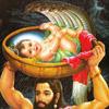 कृष्ण जन्माष्टमी व्रत