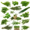 शारीरिक बाधाएं हरने वाली वनस्पतियां