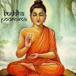 Budha Jayanti